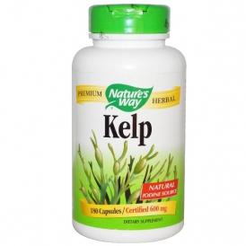Келп – йод для щитовидки