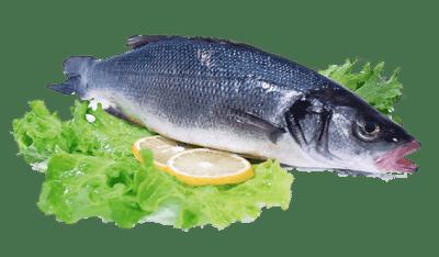 Свойства рыбьего жира в капсулах