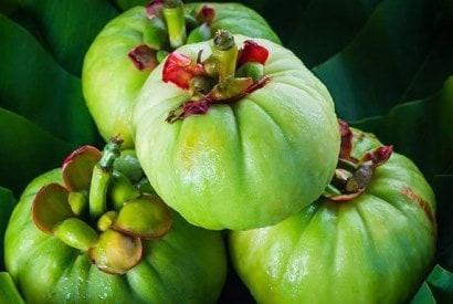 гарциния камбоджийская для похудения свойства